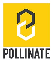 Pollinate Art Festival